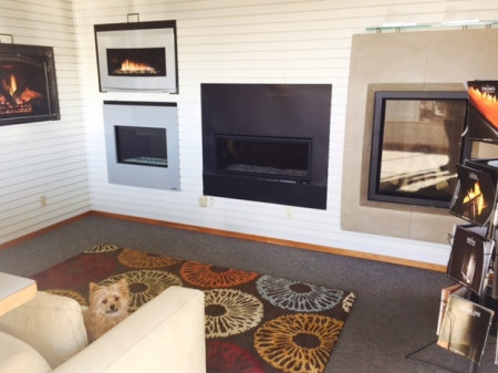 Humphrey The Office Dog Enjoying Tri County Fireplace Showroom